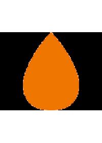 Κινητήρες LPG/CNG